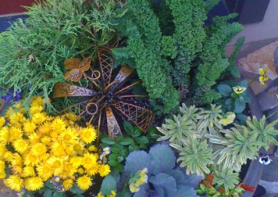Autumn fall container-landscape services