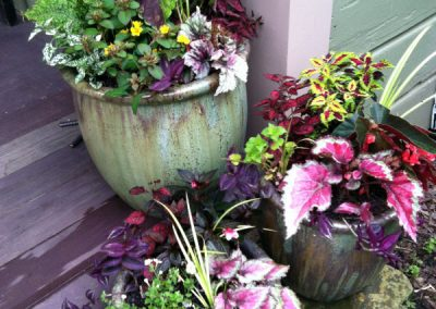 Colorful planters make a front door more welcoming