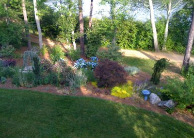 landscape design-trees-shrubs-perennials