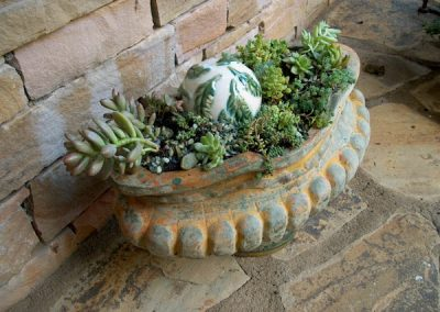 succulents-virtual landscape services-container gardens