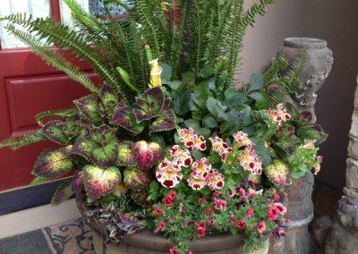 summer container garden-landscape designer services