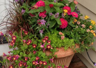 landscape design container plantings