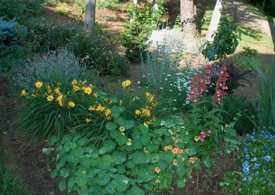 Perennial Gardens take Center Stage