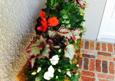 Begonias and impatiens add color to the front door.