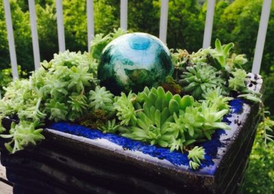 Cool off your deck with succulents