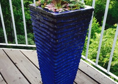 succulents-containers-gardening