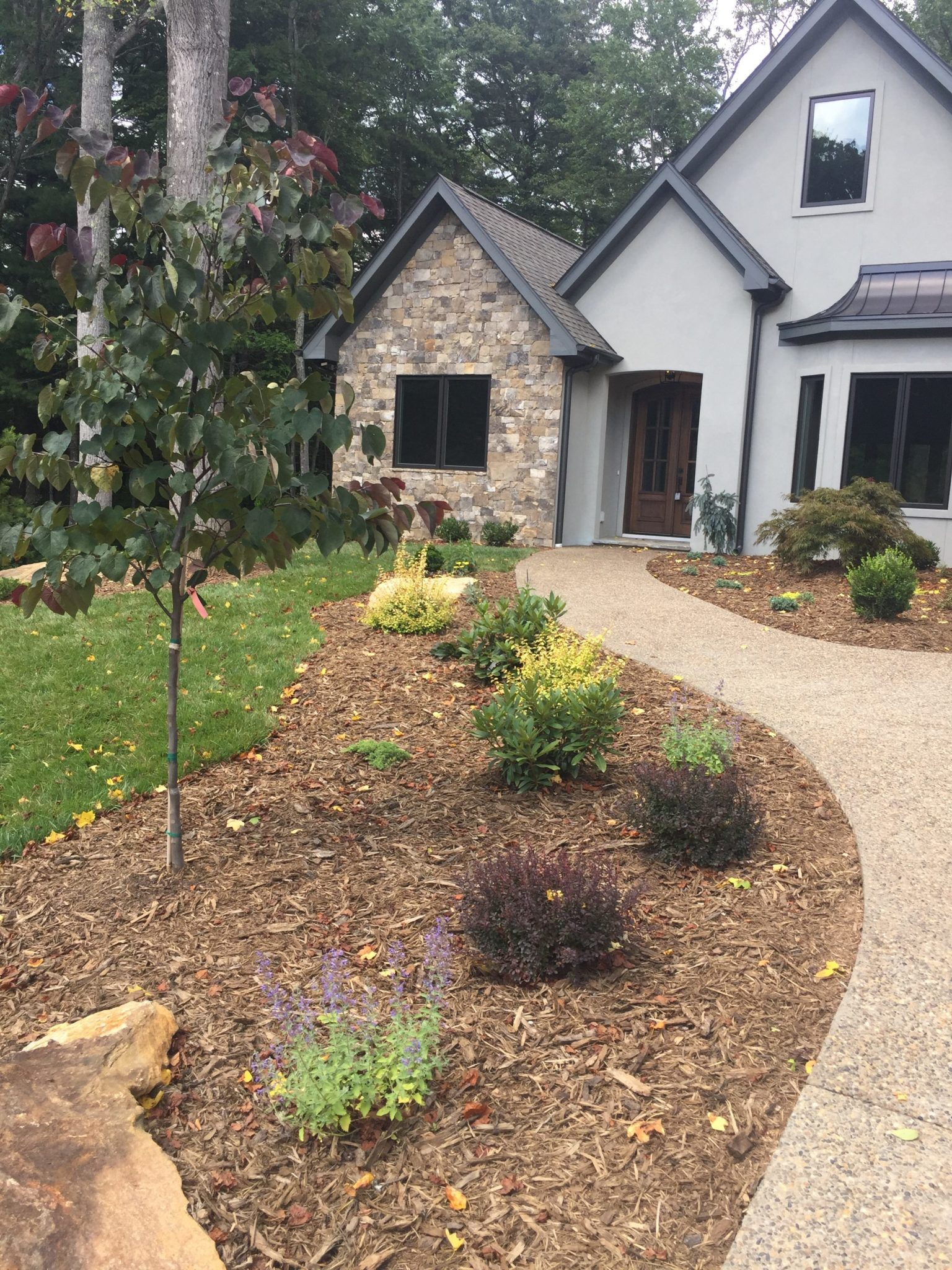 Contractor specials for spec home landscape design for Spec home