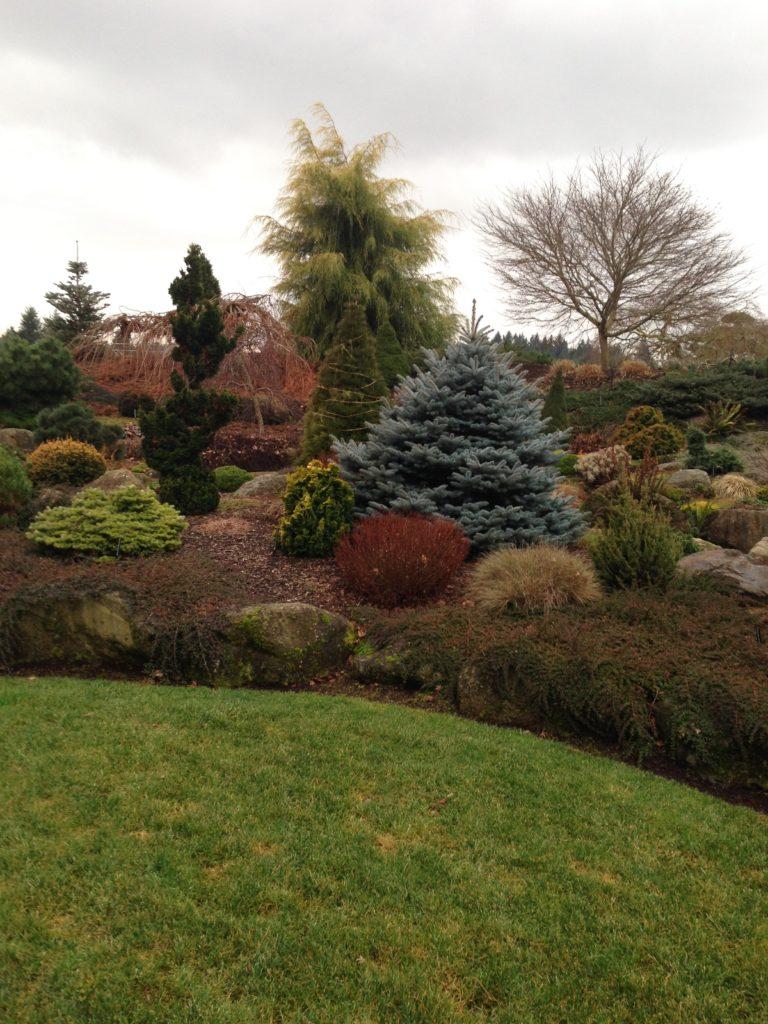 garden design-garden designer-Hendersonville